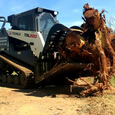 rock and brush grapple pulling tree